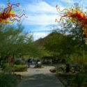 Apropos Creations Now A Preferred Vendor at Desert Botanical Garden