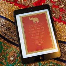 Destination Hindu Wedding Planner (7)