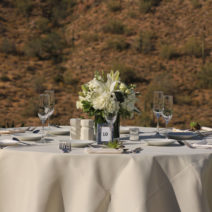 Fountain Hills Arizona  Wedding Apropos Creations Arizona Wedding Planner