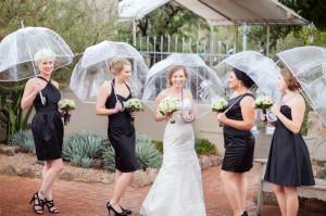 Desert Botanical Garden Rain Wedding