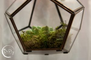 Hanging Terrarium Centerpiece Elegant Luxury Wedding